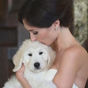 düğüne ev hayvanınızı dahil edin