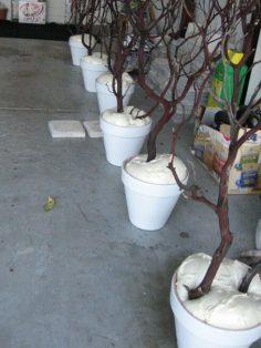 süs ağacı yapımı düğün süslemeleri